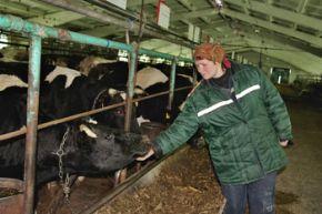 Составляющие большого молока